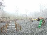 霧のわんこのお庭